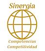 Sinergia en Competencias y Competitvidad
