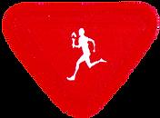 Olympics_Adventurer_badge_image_medium.p