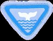 whale_e-award_badge_image__medium.png