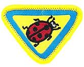 Ladybugs_image_medium.jpg