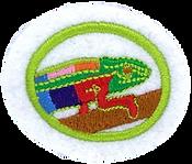Animal_Camouflage_badge_image_medium.png