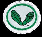 Seeds_badge_image_medium (1).png