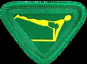 Gymnast_award_badge_image_medium.png