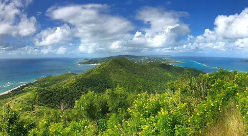 hill-view-StCroix-JessicaWiseman-TNC.jpg