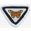 Butterfly_e-Award_badge_image_medium.jpg