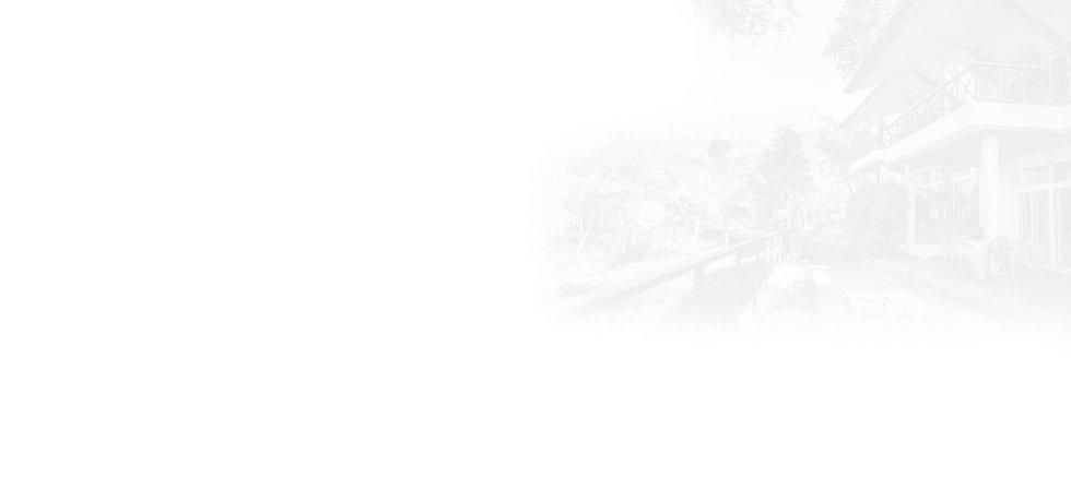 norwood-website_02.jpg