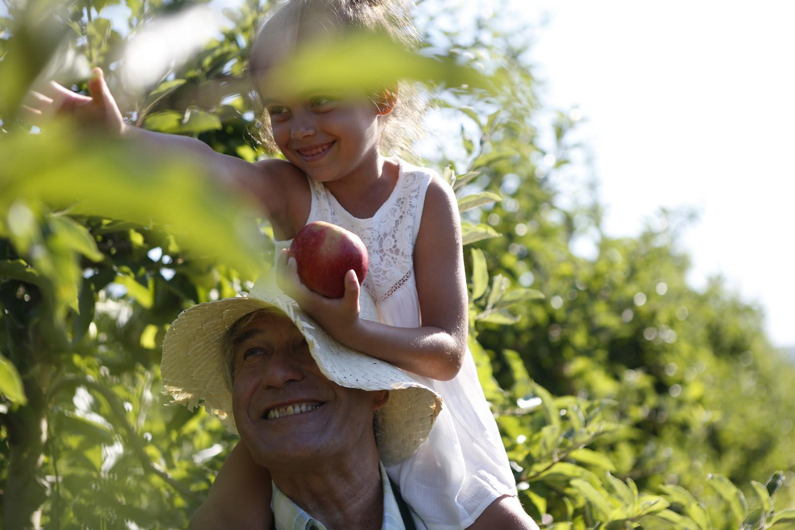 Hero_day 2_apple garden grandpa__S4U8638