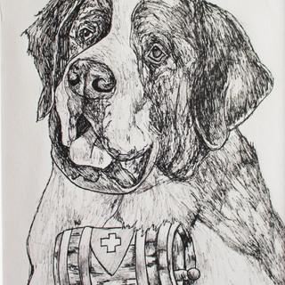 Saint Bernard Fineliner Drawing