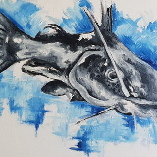Costa the Catfish