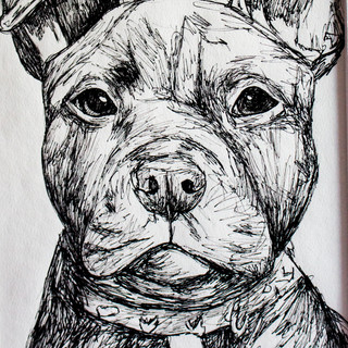 Staffordshire Bull Terrier Drawing  ORIGINAL Drawing Staffie image 0 Staffordshire Bull Terrier Drawing  ORIGINAL Drawing Staffie image 1 Staffordshire Bull Terrier Drawing  ORIGINAL Drawing Staffie image 2 Staffordshire Bull Terrier Drawing  ORIGINAL Drawing Staffie image 3 Staffordshire Bull Terrier Drawing  ORIGINAL Drawing Staffie image 4 Staffordshire Bull Terrier Drawing  ORIGINAL Drawing Staffie image 5 Staffordshire Bull Terrier Drawing  ORIGINAL Drawing Staffie image 6 Staffordshire Bull Terrier Drawing  ORIGINAL Drawing Staffie image 7 Staffordshire Bull Terrier Drawing  ORIGINAL Drawing Staffie image 8 Staffordshire Bull Terrier Drawing  ORIGINAL Drawing Staffie image 9 ArtbylouiseShop Local seller   12 sales 12 sales   5 out of 5 stars      Staffordshire Bull Terrier Fineliner Drawing