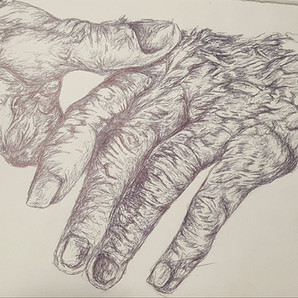 Sketch of Aged Hand