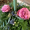 Thumbnail: 1 Candle Table Centerpiece