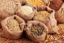 semillas-digestion.jpg