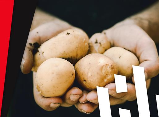 3 Fakten über Kartoffeln!