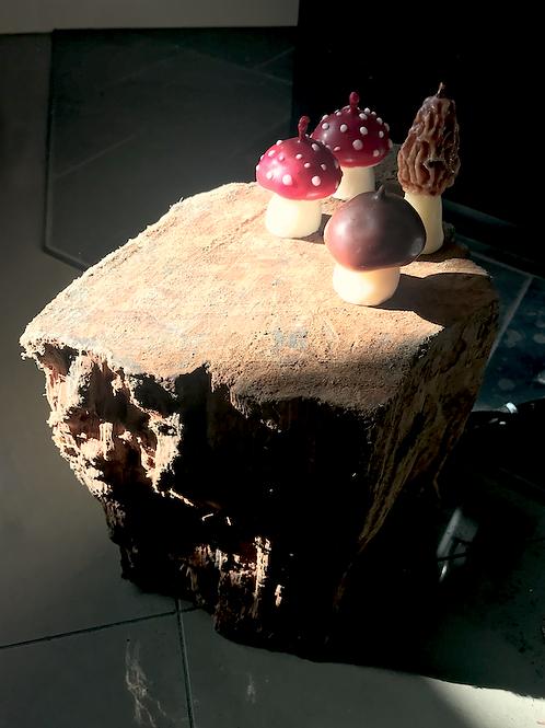 Mushroom Candle Set