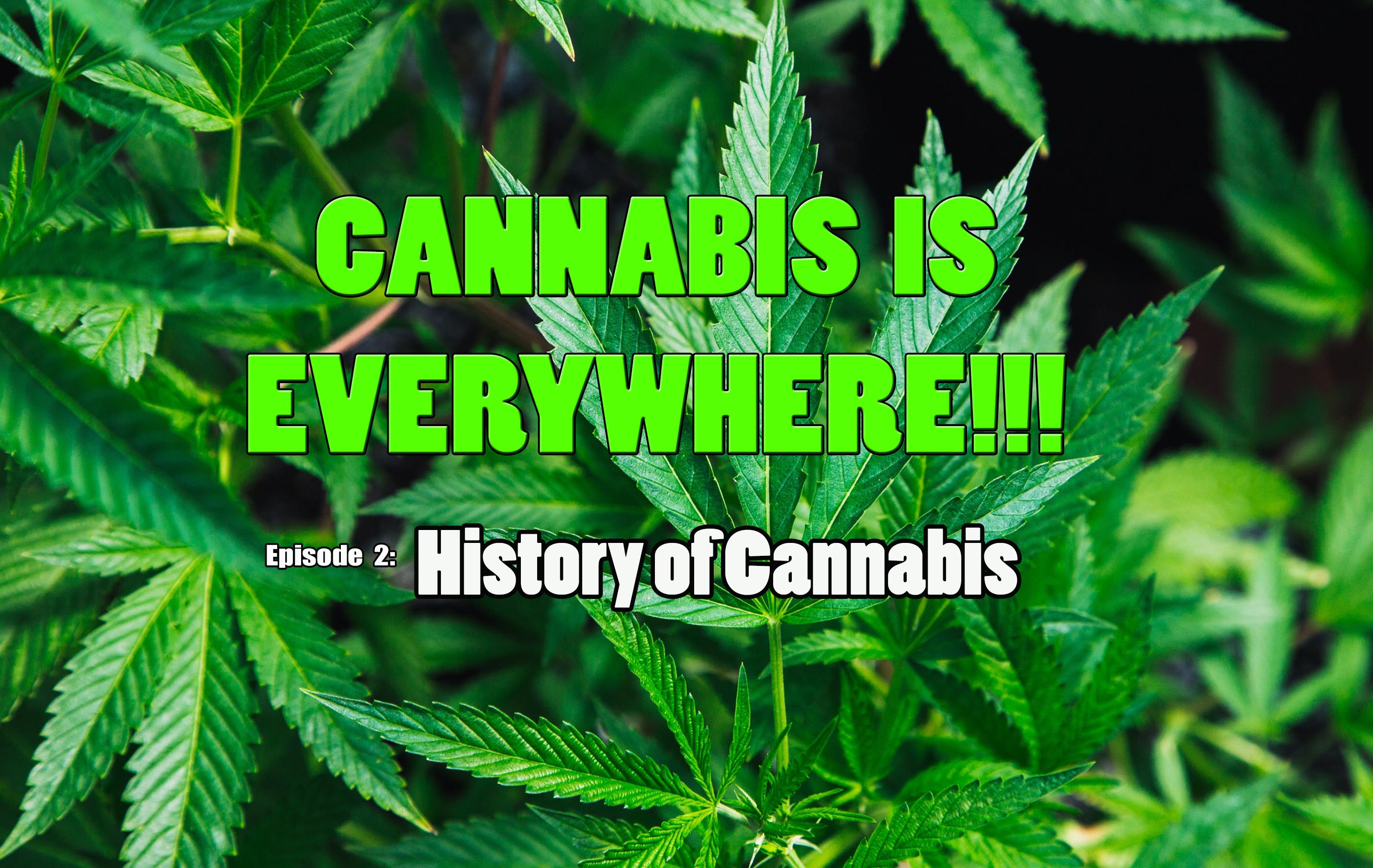 History of Cannabis