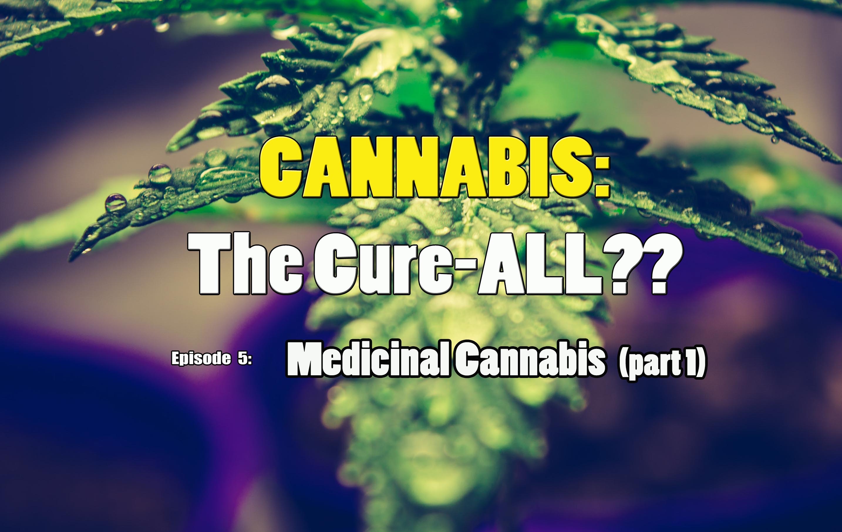 Medicinal Cannabis (part 1)