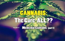Medicinal Cannabis (part 1)