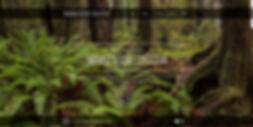 screencapture-emeraldsisterscollective-2