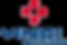 Vinci-Construction-Logo.png