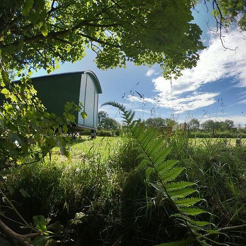 Hidden Hut.jpg