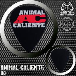 animalcaliente01.jpg