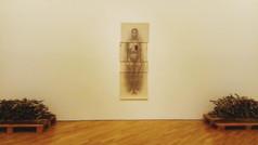 Rosana Paulino, Assentamento, Installation, 2013