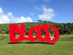 Thierry Alet, Blood, aluminium, 250 X 700 X 60 cm, 2011. Photo Kalynka Cruz en 2014.