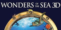 wonders of the sea 3D.jpg