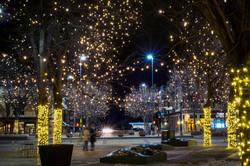 foco_city_lights