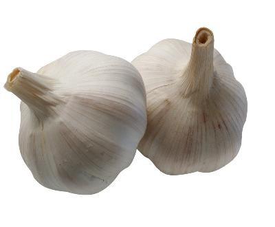 Garlic to lower cholesterol?