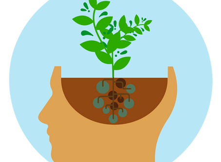 Learn about our Growth Mindset approach!