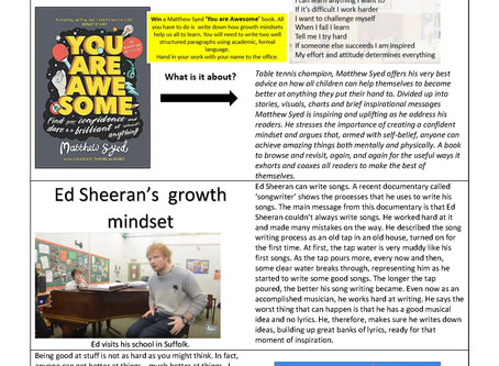 Our new Growth Mindset Newsletter!