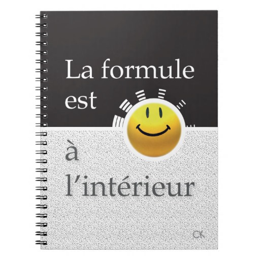note_book_80_pages_agraffstudio_carnet_a_spirale-rbefebb67492b47a2a7e75387fe204131_ambg4_8byvr_512
