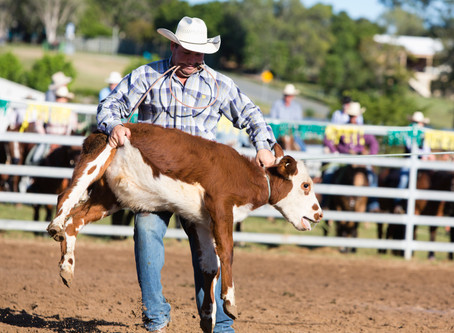 The Push to Ban Calf Roping is in Full Swing