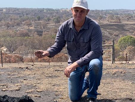 Fire scorched Australia's ground zero on soil impacts