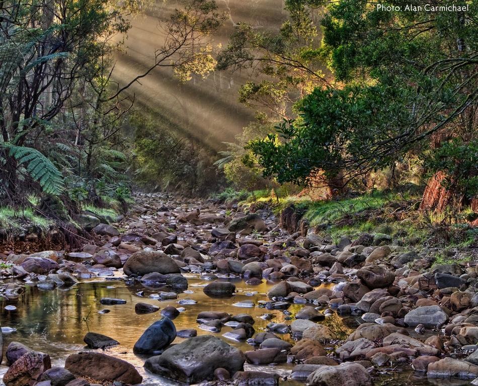 Barham River