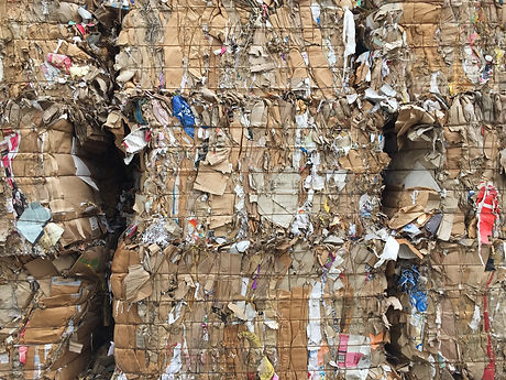 paper and cardboard at the recycle plant