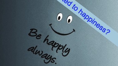 Is Happiness an Addiction