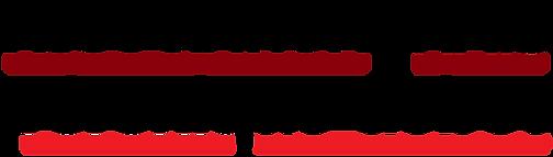 VG_Logo_Association_NOIR@2x-8.png