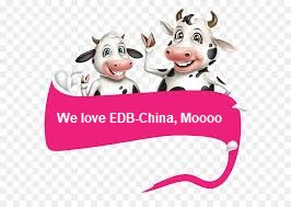 Happy Cows, tasty meat