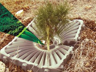 个人环保的根源 Personal environmental protection for the root