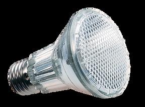 LED PAR20.png