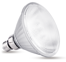 LED PAR30.png