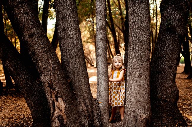 Sonoma County Photographer, Diana Jex Photography