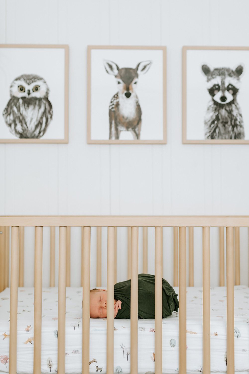 newborn boy sleeping in his wooden crib with three illustrated drawings of an owl, baby deer and baby raccoon behind him on the wall, newborn photographer for petaluma, diana jex photography