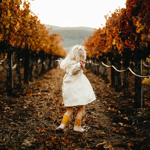 Family Photographer, Sonoma, Marin, Petaluma, Napa, Diana Jex Photography