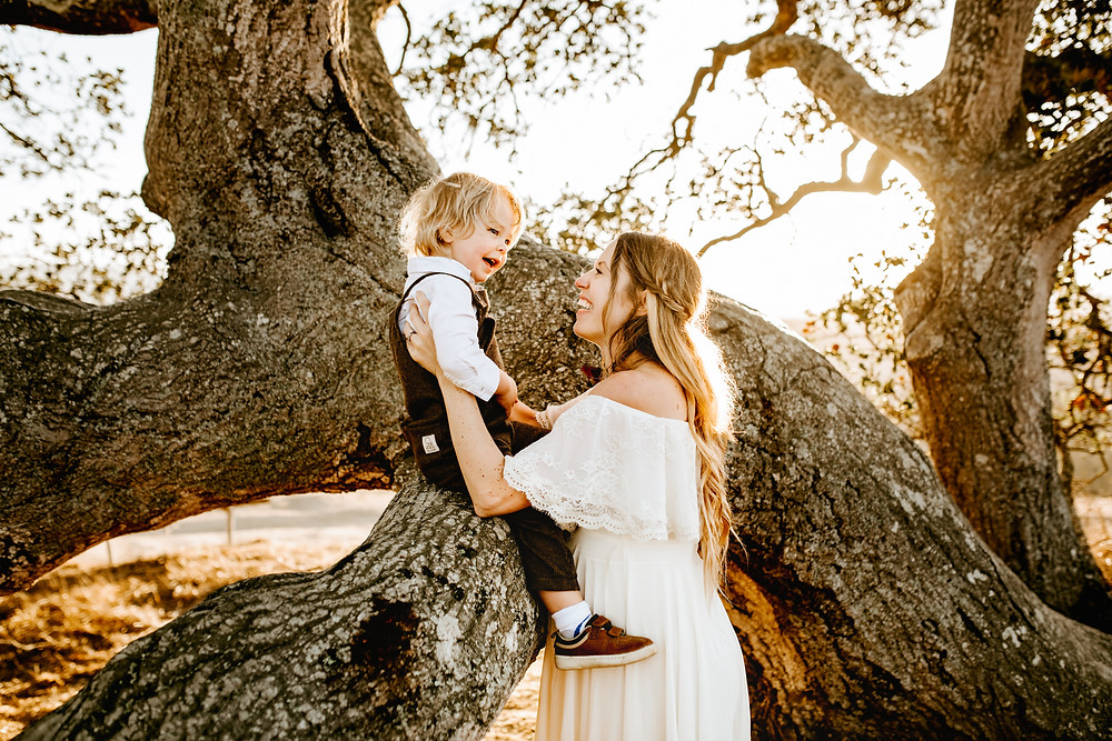 mom and toddler boy smiling and laughing, mom holding up her boy on a large oak tree branch, baby boy sitting in tree