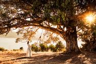 Marin County Maternity photographer, Diana Jex Photography