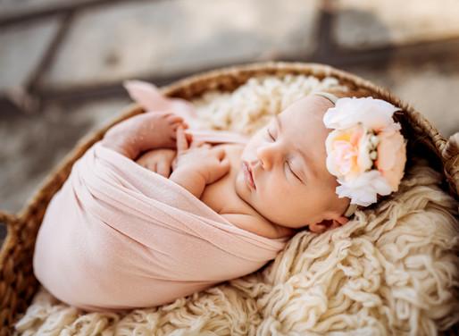 Baby Photographer, Diana Jex Photography, Sonoma